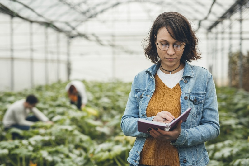 Fighting Food Insecurity with a Competitive Fellowship — Rebecca's Research