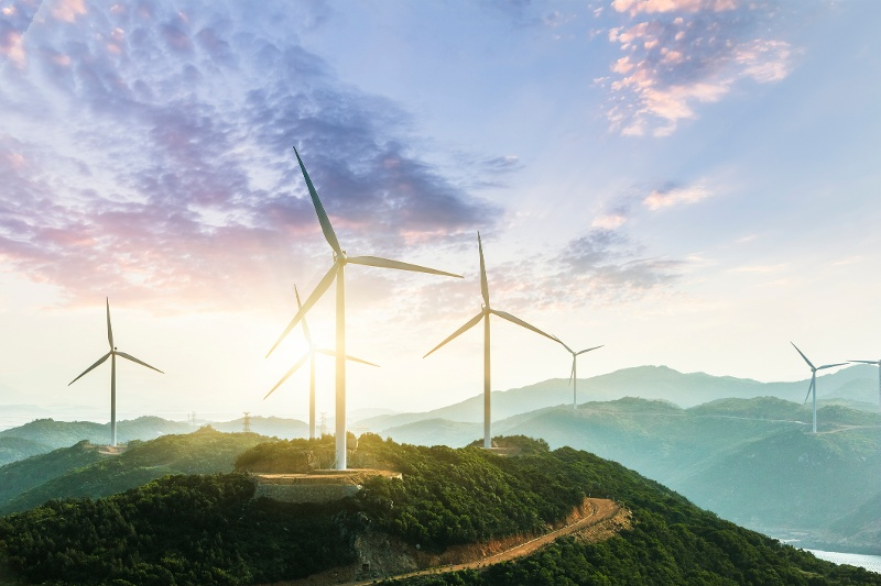 Studying Energy & the Environment to Make the World a Better Place